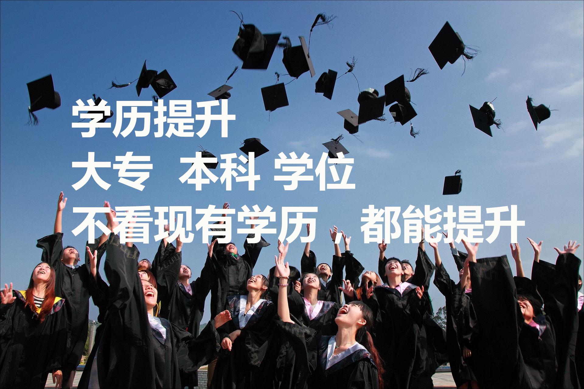 河南恒途十博网站app